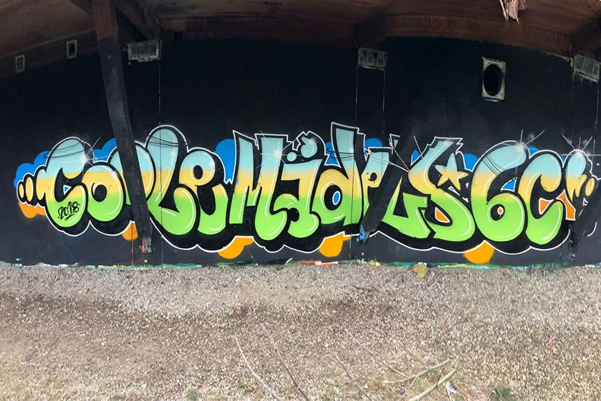 zum 12. Geburtstag von Luisa haben wir von Graffiti Stuttgart mit Ihr und Ihren Gästen einen coolen Graffiti Kindergeburtstag gefeiert.