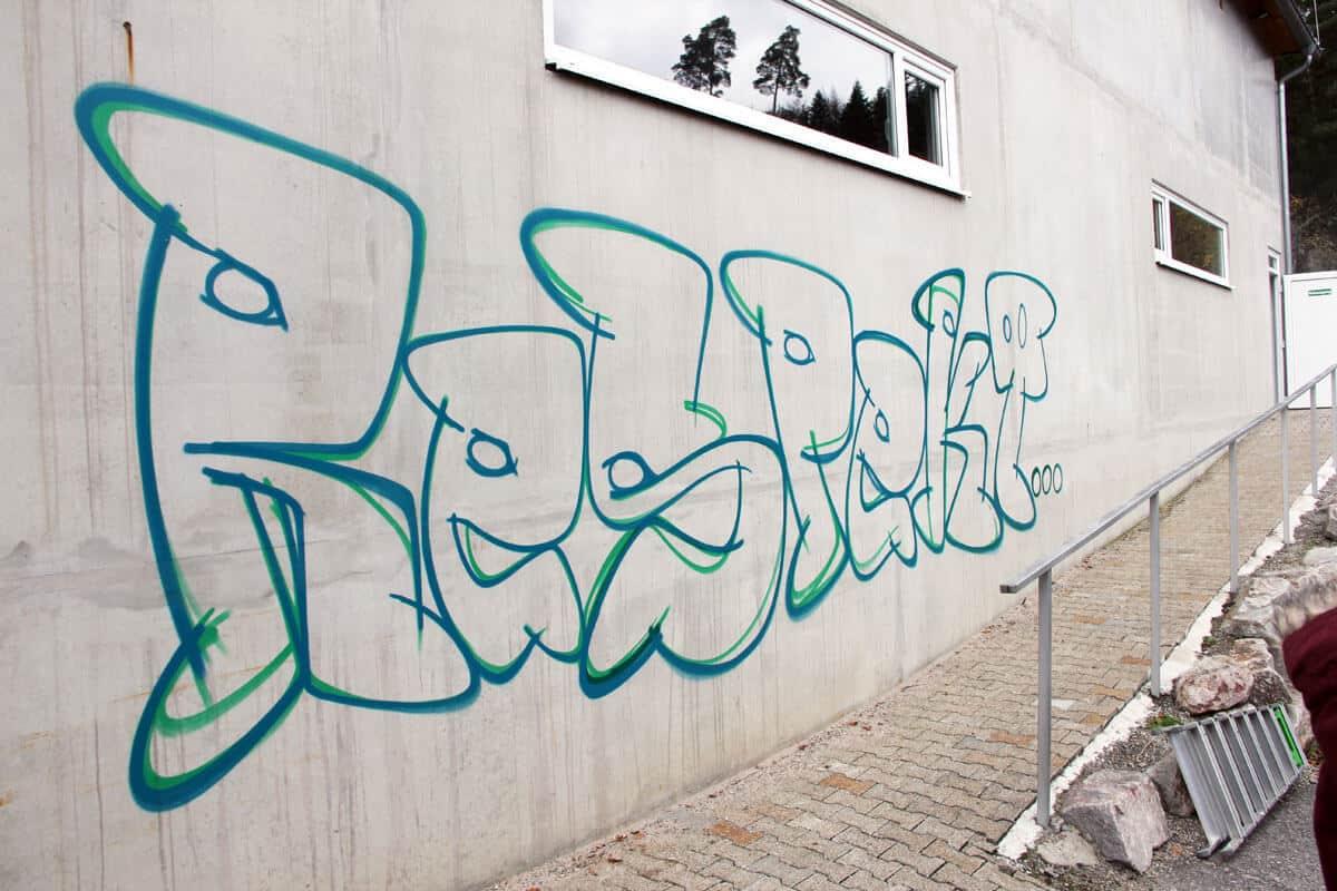 Zusammen mit dem Jugendhaus, Jugendgemeinderat und der Diakonie Nagold haben wir einen Graffiti-Workshop am Schützenhaus organisiert.