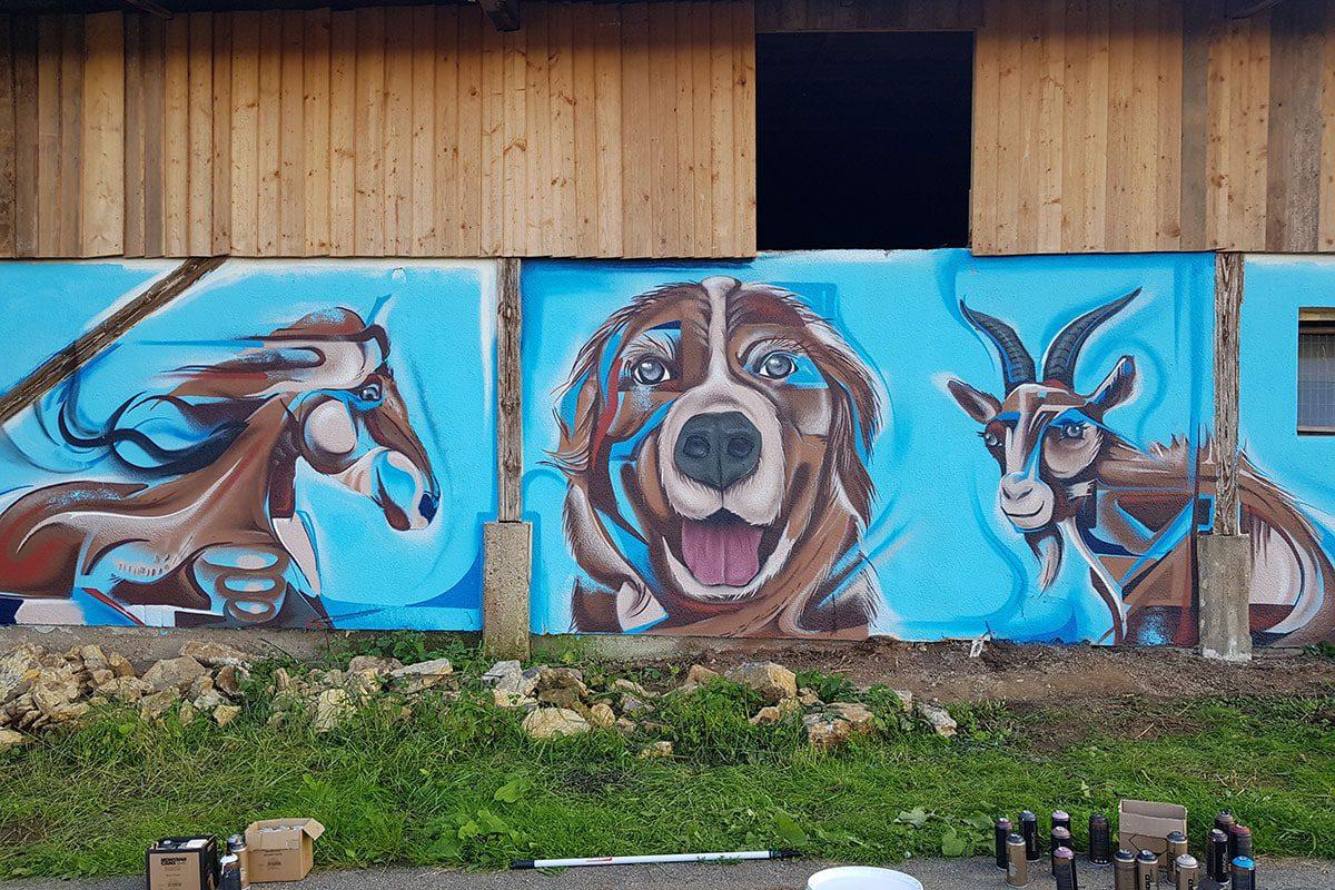 Für den Gnadenhof Animal hope aus Rosenberg im Landkreis Neckar-Odenwald-Kreis haben wir eine Scheune mit einem farbenfrohen Graffiti verschönert.